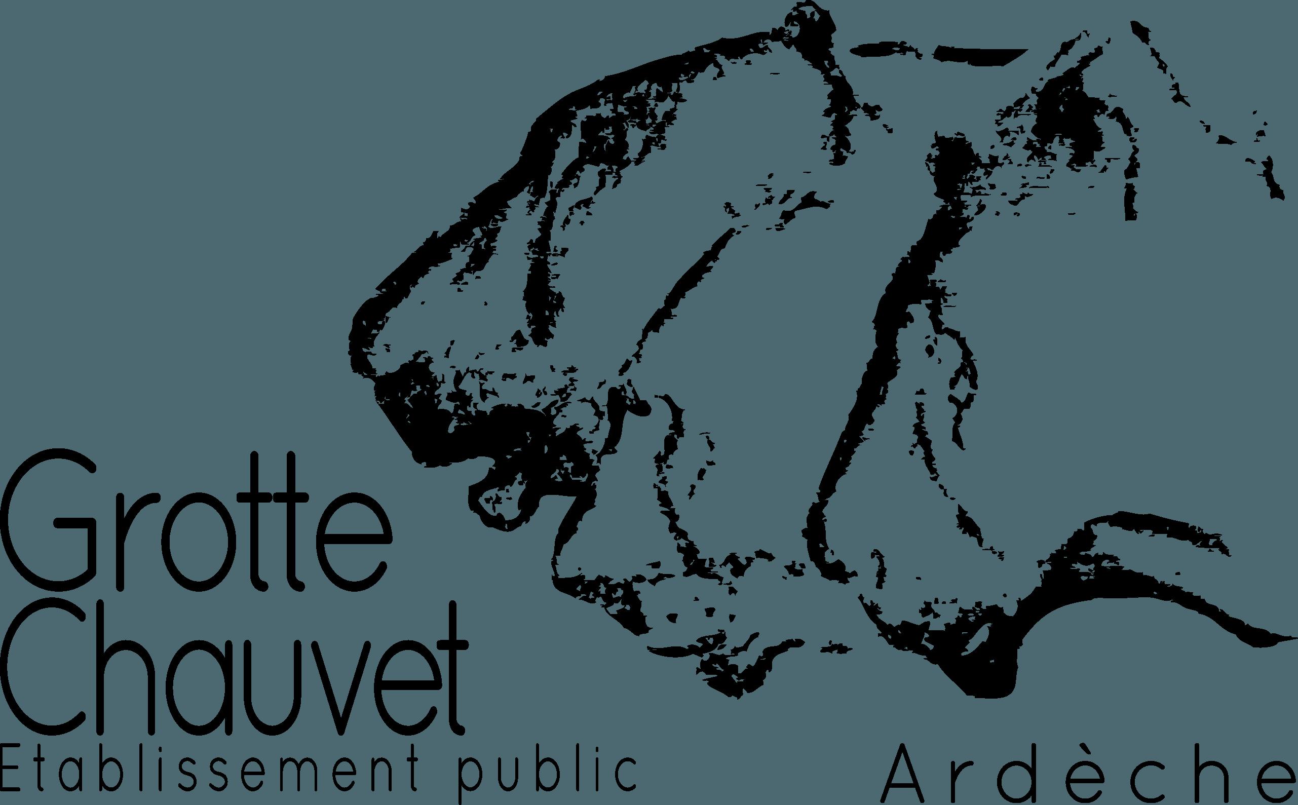 Syndicat Mixte de l'Espace de Restitution de la Grotte Chauvet – Pont d'Arc